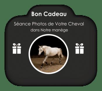 Bon cadeau Séance Photos Cheval en Liberté (à partir de 450 €)
